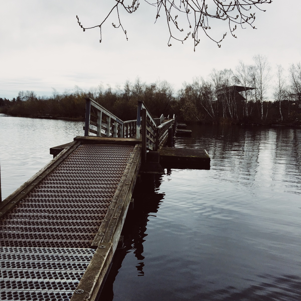 A floating walkway over Lake Washington that is part of the Arboretum Waterfront Trail near the Washington Park Arboretum in Seattle, WA